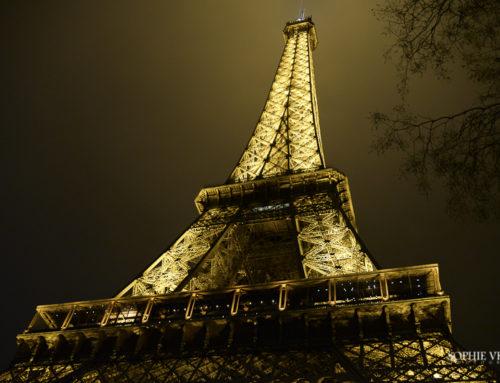 Un petit tour à Paris – Janvier 2016